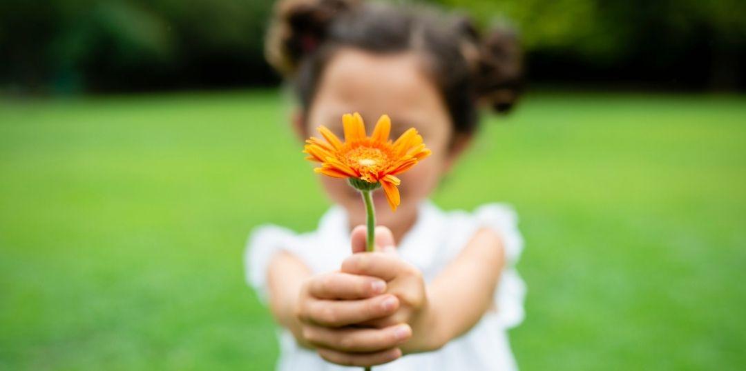 La Gratitude et Comment la Pratiquer au Quotidien